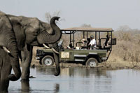 Hwange Safari Camp